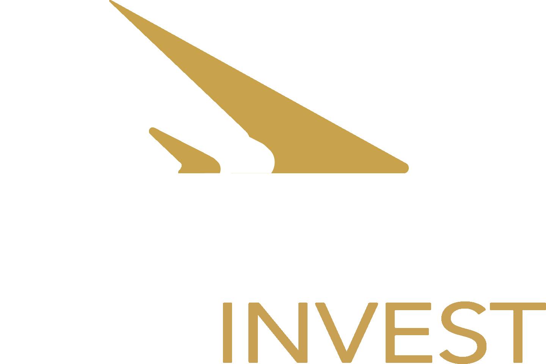 STAKRN Invest - Conseil en financement pour l'esport et le divertissement